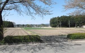 IBC SOLAR_Japan_PV-plant_site